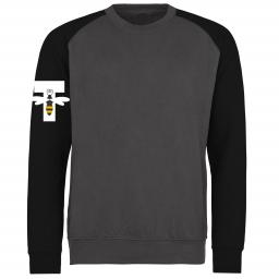 Torque Dance 'Bee' Baseball Sweatshirt