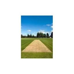 40 BAGS OF SUPER SURREY CRICKET WICKET LOAM