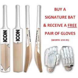 Signature Cricket Bat with FREE Gloves
