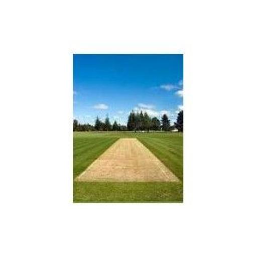 WICKET RENOVATION WITH HEADSTART (10KG OR 20KG)