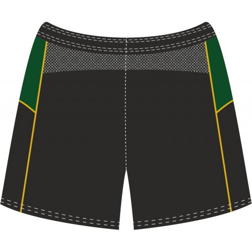 Training Shorts Back.jpg