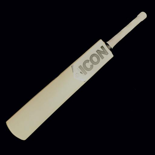 DS 122 bat copy.jpg