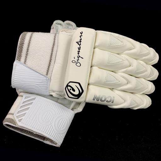 Signature gloves main copy.jpg