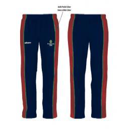 t20 pants.png